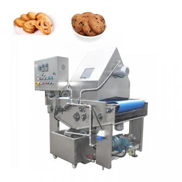 Servo Control Cookie Wire Cutting and Extruder Production Line