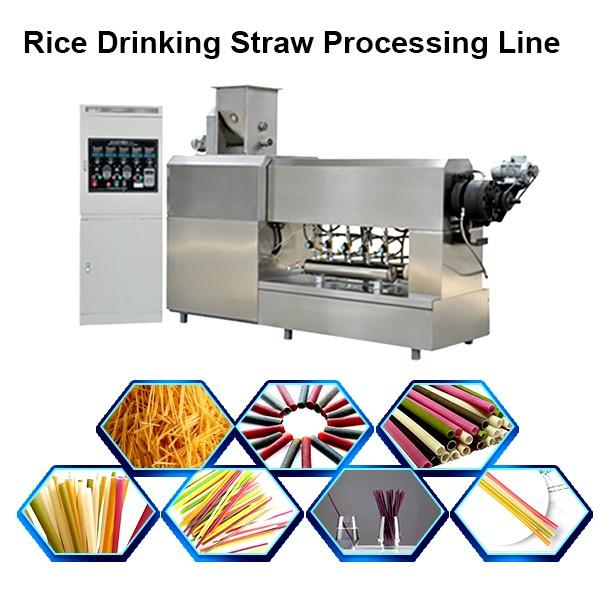 PE PP drinking straw production/ extruder line #1 image