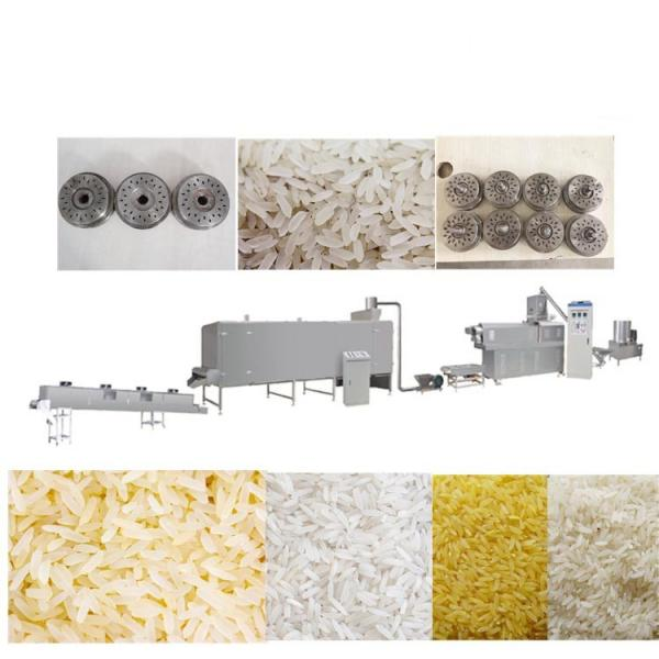 Chinese Peanut Rice Candy Brittle Forming Processing Production Machine (WSHS) #1 image