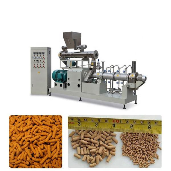 Automatic High Quality Dry Type Floating Fish Feed Extruder Machine From China #1 image